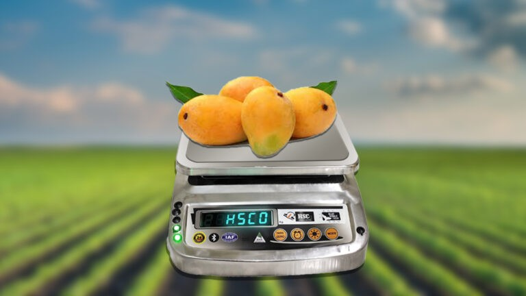 How to Grade a Weighing Scale?